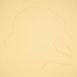 Portrait Drawing Lessons - Verna Shape