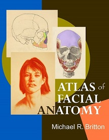 Anatomy for portrait artists